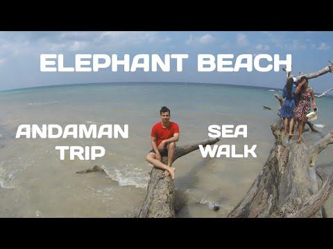 ELEPHANT BEACH HAVELOCK | SEA WALK | SNORKELING | ANDAMAN TRIP