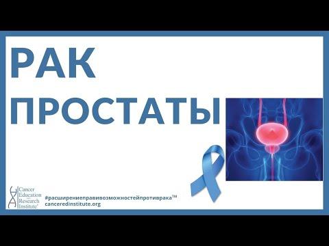 Рак простаты - Симптомы - лечение | Cancer Education and Research Institute (CERI)