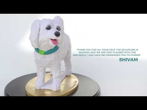 Bichon Frise Dog Sculpture in full colour 3D printed sandstone