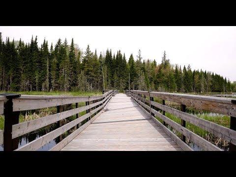 Mactaquac Provincial Park | Episode 1 | #ExploreNB Travel Files