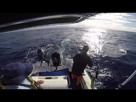 Trolling For Spearfish And Ono (Wahoo) In Hawaii