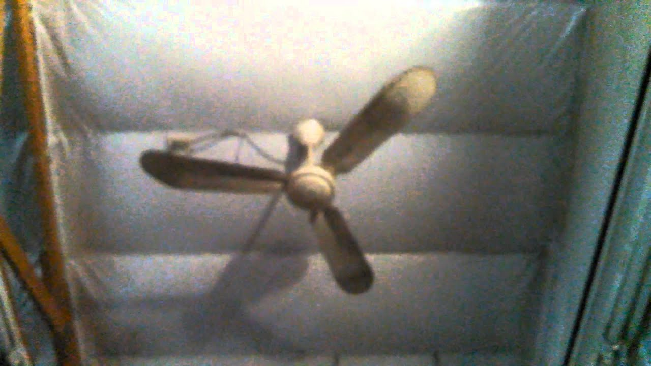 ConTech Industrial mercial Ceiling Fans in two workshops