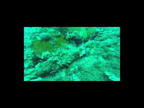 Dive in Lemnos, Greece - 3 Aug 2015 (Prasonisi-Evgatis)