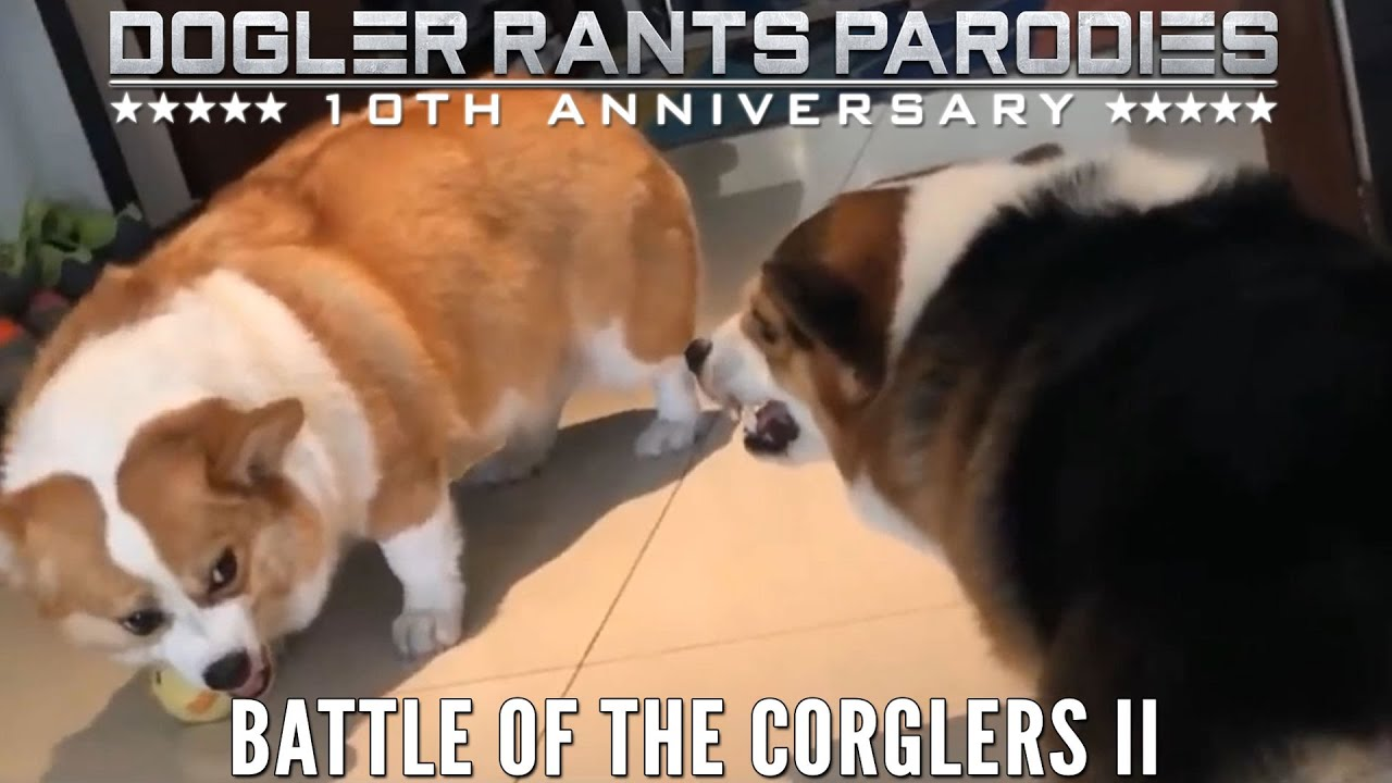 Battle of the Corglers II