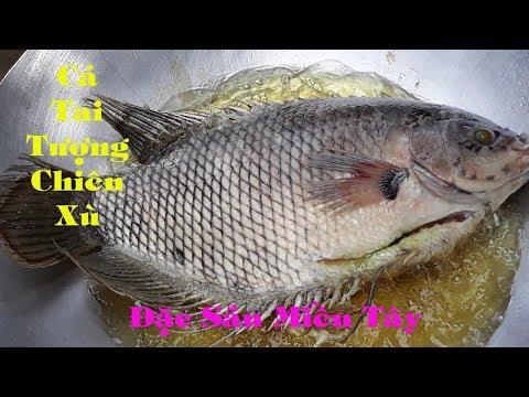 Cá tai tượng chiên xù - đặc sản miền tây - Ngọc Hồ TP1