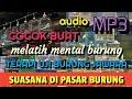 Suara Terapi Semua Burung  Mp3 - Mp4 Download