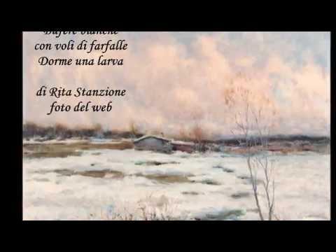 ' L'inverno di Luna Bionda' Raccolta Haiku