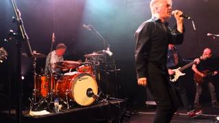 the undertones | girls don't like it | live @ trabendo