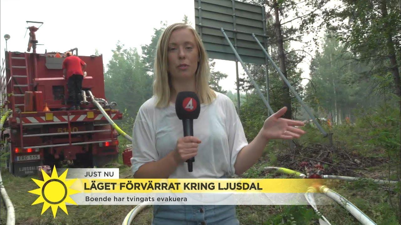 """Branden i Ljusdal – """"Det är så illa att brandmännen inte kan vara nere på marke - Nyhetsmorgon (TV4)"""