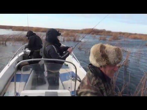 осенняя рыбалка в астраханской области
