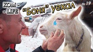 """видео: ПРОДАЛИ """"БОНЮ"""" И ПОДАРОК """"ТОЛСТОМУ"""""""
