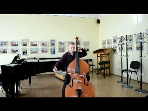 Pichl - Concerto in D for string bass; 1. Allegro moderato