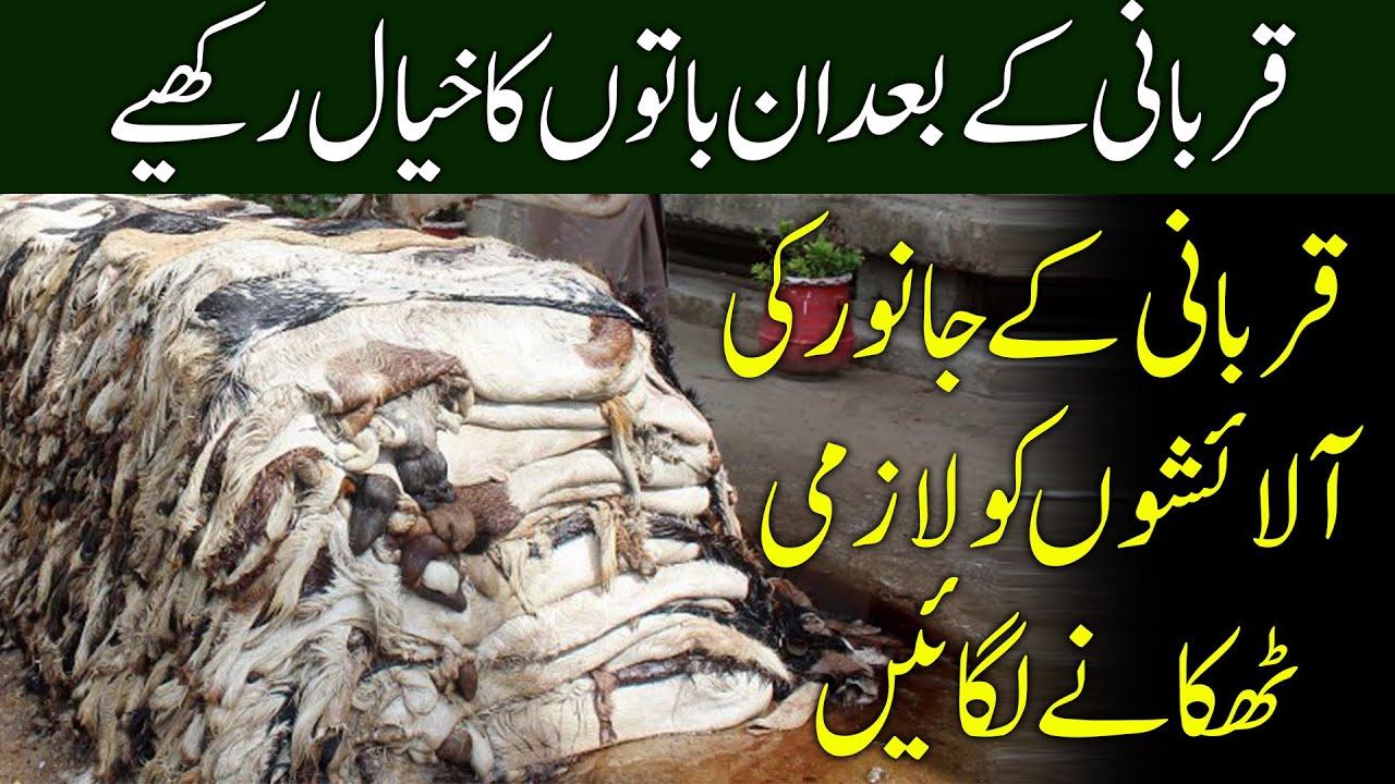 Qurbani Ke Bad In Baton Ka Khial Rakhen   Sony Snap