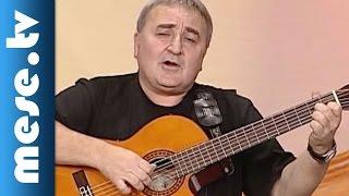 Kaláka együttes - József Attila: Altató (dal, koncert részlet)