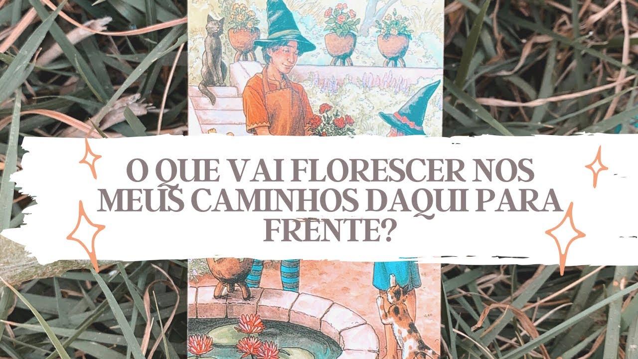 O QUE VAI FLORESCER NOS MEUS CAMINHOS DAQUI PARA FRENTE? - Tarot responde