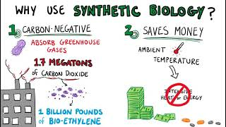 Applying Synthetic Biology to Reverse Climate Change