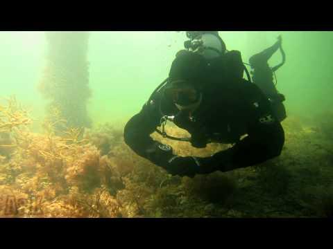 SCUBA Diving A&K HD | Port Victoria 2012, South Australia HD