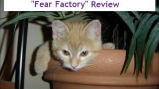 "Legion of Superheroes ""Fear Factory"" Review"