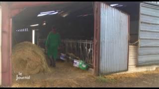 Reportage : les agriculteurs soucieux de l'environnement