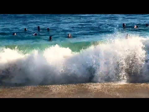 Pool Shark 2 Official Movie Trailer