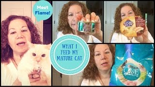 "Chat and Review | What Organic Cat Food Does My Kitty ""Flame"" Eat?"