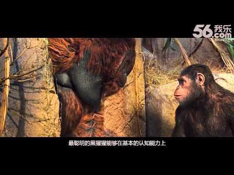 龙斌大话电影 第134期:猩球崛起2
