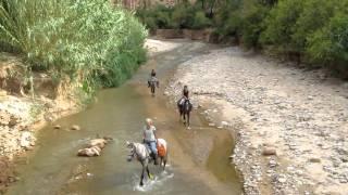 tourisme équestre au sud maroc