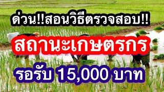 ด่วนมาก!!!วิธีตรวจสอบสถานะเกษตรกรผ่านhtt://farmer.doae.go.th ง่ายมากใครๆก็ทำได้เพื่อรอรับเงินเยียวยา
