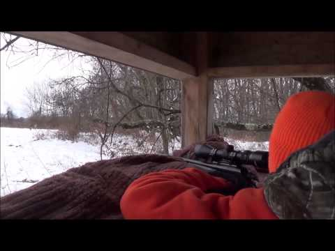 Youth Hunter Tags His First Buck!