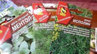 Обзор семян пряно-ароматических и лекарственных трав