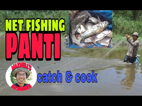 How To Catch Fish Using Fishing Net