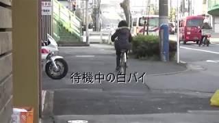 【白バイ取り締まり】信号機が設置されていない危険な交差点 (王子警察署前)