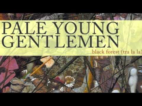 Pale Young Gentlemen - We Will Meet