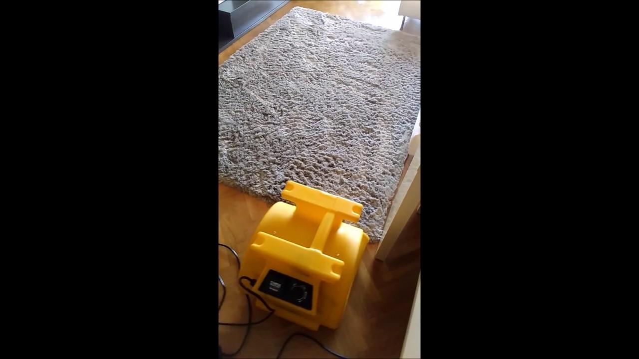 Limpiar alfombras de pelo largo awesome alfombras de pelo - Limpiar alfombra en casa ...