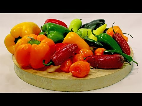 Different Kinds of Peppers and Their Uses
