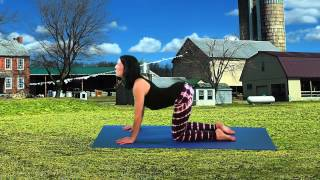 Yoga with Danielle Rae: Cat & Cow Pose