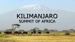 Kilimanjaro | Summit of Africa