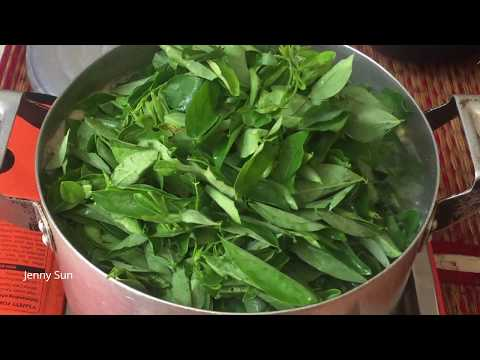 Cambodian Family Food - Video Cooking Compilation At Home - Asian Family Food
