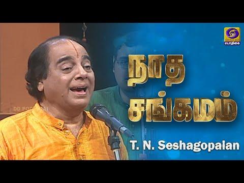 Podhigai Archives | T. N. Seshagopalan | Nadha Sangamam