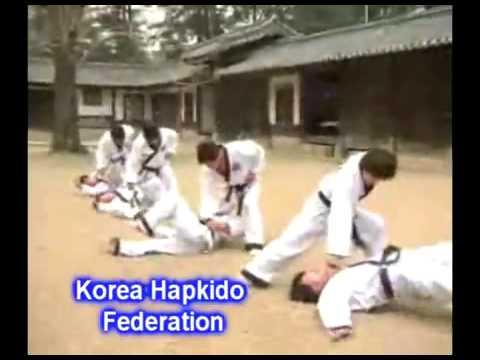 Korea Hapkido Federation History Video