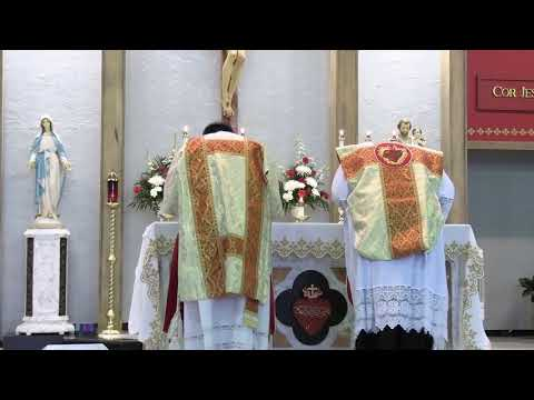 Solemnity of Christ the King 11/22/20