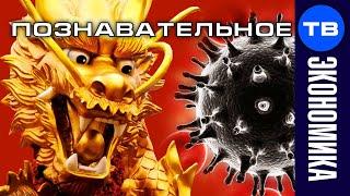 Почему коронавирус появился в Китае?
