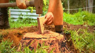 How to Remove a Tŗee Stump with a Wedge