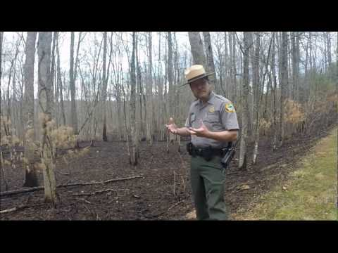 Fire At New River State Park With Ranger Joe