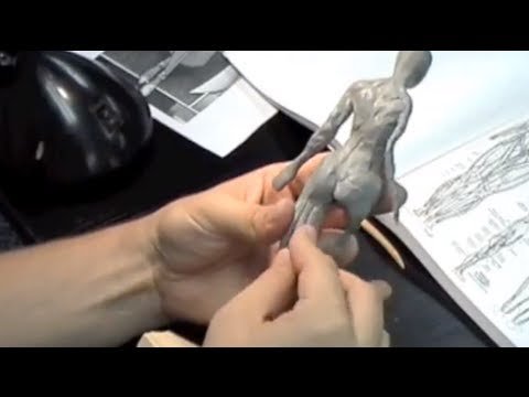 Sculpture in Clay - Class 04 - Rough Muscles