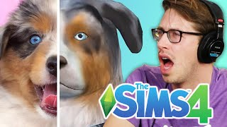 connectYoutube - Keith Controls His Friends' Pets In The Sims 4 Cats & Dogs