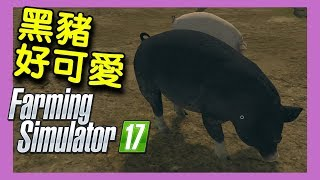 Farming Simulator 17 模擬農場17| - 黑豬好可愛