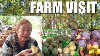 VLOG #28 : FARM VISIT | COOKING KARNENG KABAW