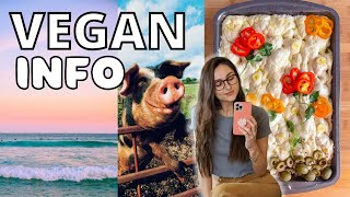 MOTIVATION TO STAY VEGAN ☀ Recipes, Facts, and Long Term Health