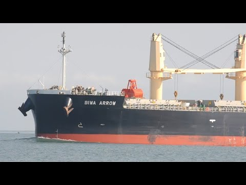 BIWA ARROW PORT OF SANTOS SHIPSPOTTING JULY 2020 #17
